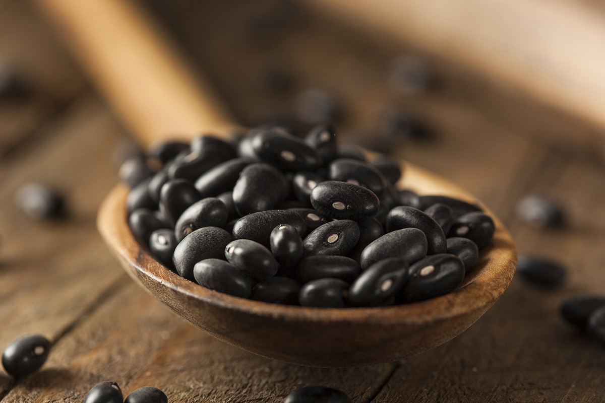 Organic Raw Dry Black Beans in a Spoon
